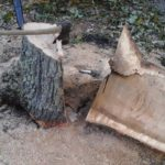 Tree Stump Removal - MJM Property Maintenance